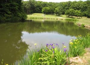白河ゴルフ